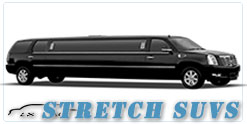 Wedding limousine in Ottawa, ON