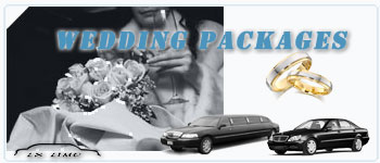 Ottawa Wedding Limos